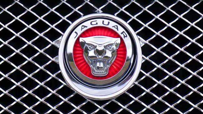 jaguar-brand